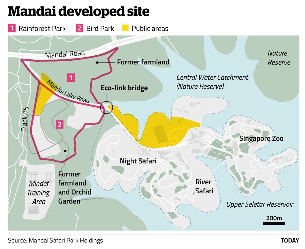 Mandai Developed Site
