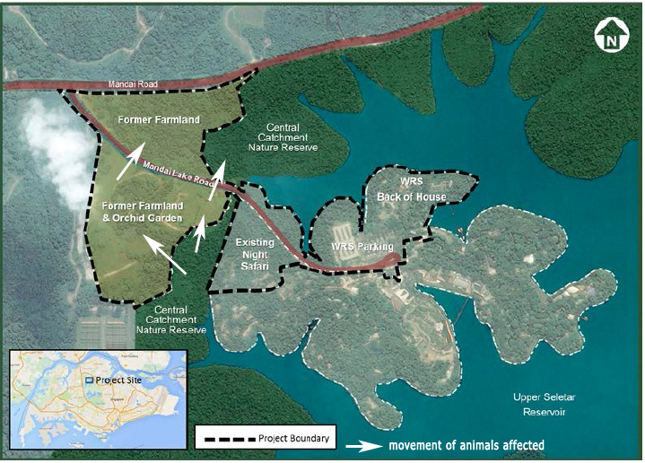Mandai development affects wildlife corridor